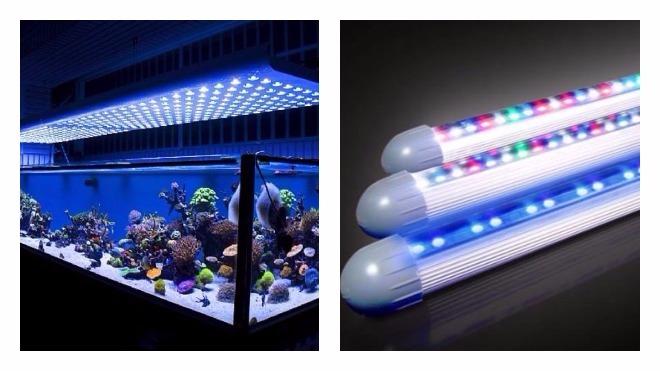 Мощность подсветки аквариума
