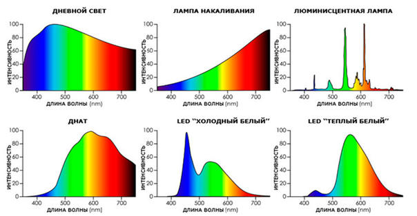 Сравнение спектров разных источников света