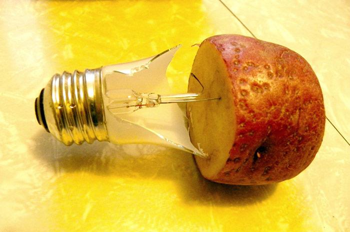 выкручиваем лампочку с помощью картофеля