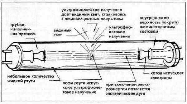 Принцип работы люминесцентных ламп