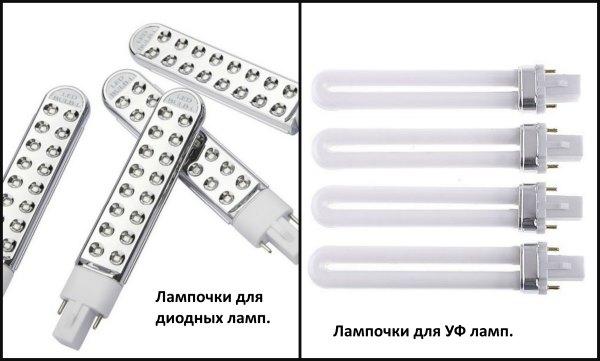 Лампочки для ламп для шеллака.