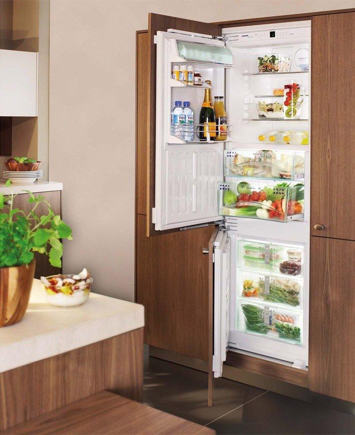 встраиваемый холодильни