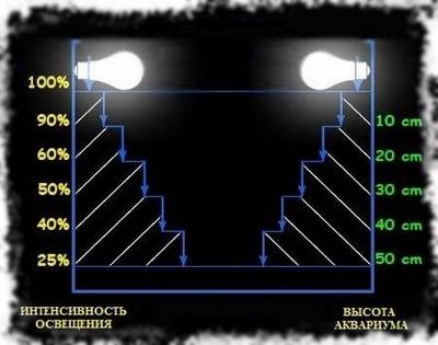 Интенсивность освещения