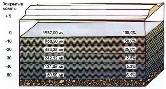 Распределение света в воде